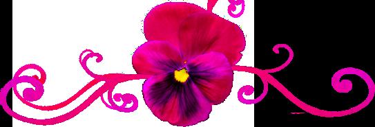 Pink Pansy Divider by Andorada