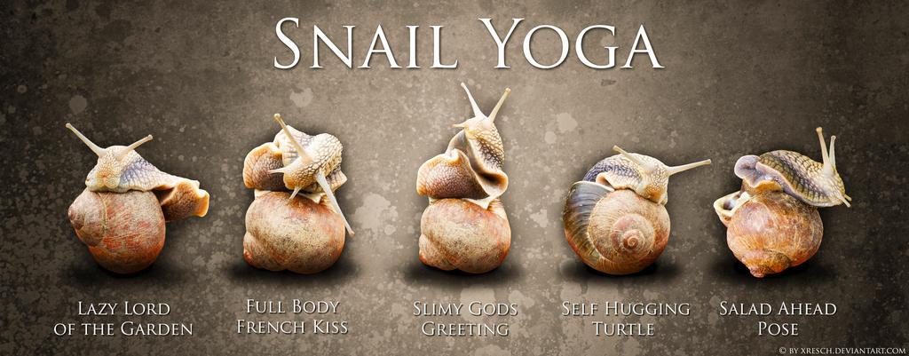 Snail Yoga by XResch