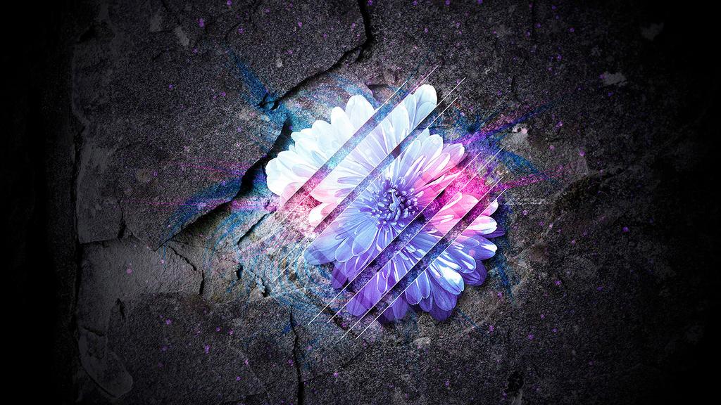 Sliced Flower by XResch