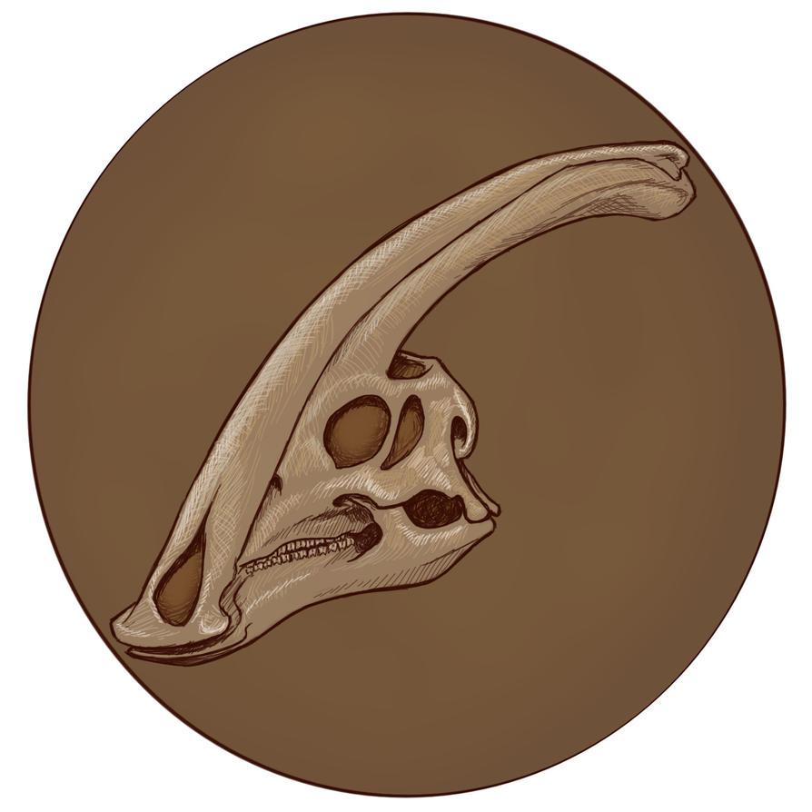 Parasaurolophus Skull by virgiliArt