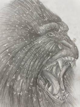 Realistic Gorilla Sketch