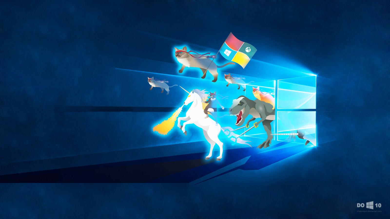 Windows 10 wallpaper feat ninja cat team