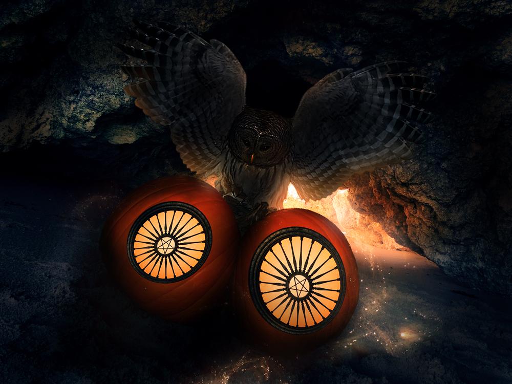 Pumpkin by xLocky