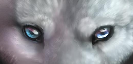 wolven eyes by Foxbat-Sullavin