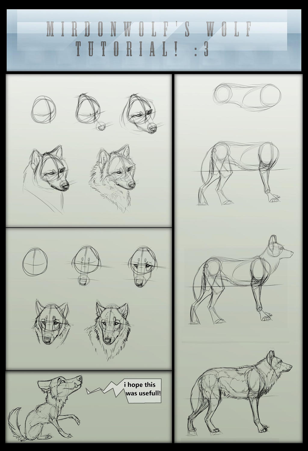 Mirdonwolf's Basic Wolf Tutorial By Foxbat-Sullavin On