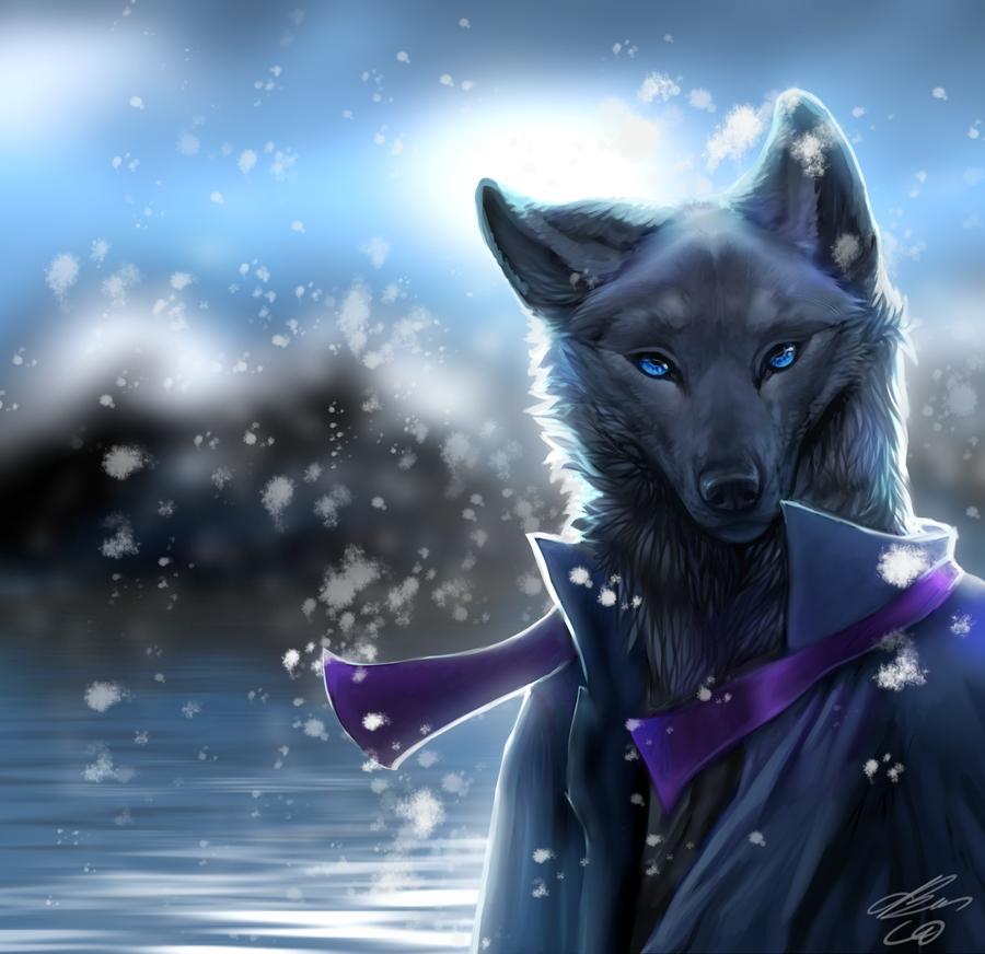 Black wolf furry - photo#12