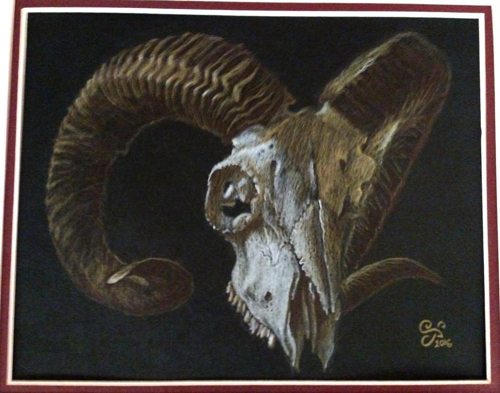 Ram Skull by Kittenpants