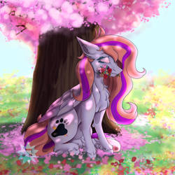 ~ Lovely flowery field ~ Chewy-Tartz [Request] by LucyThunderforth