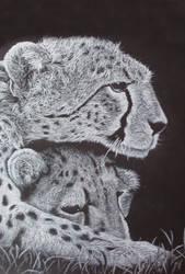 Cheetahs II by Dhria