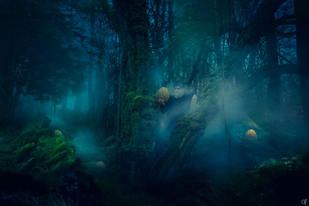 mystic forest by flockenpracht