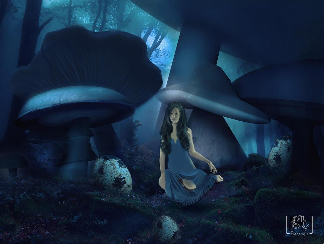 mushroom concept by flockenpracht