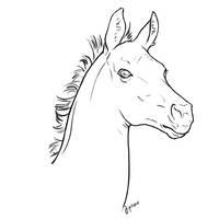 Free foal head lineart by jiphorse