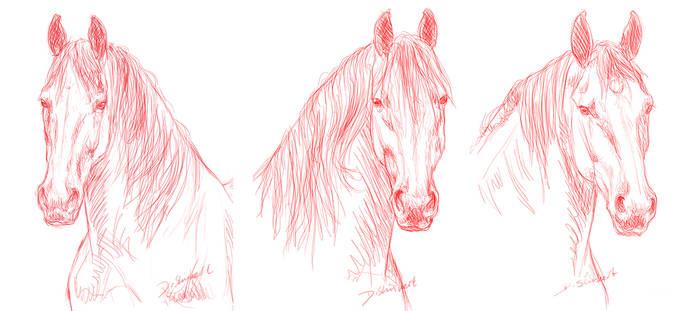 3 friesians sketch