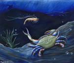Shrimp and Blue Crab -OilSpill
