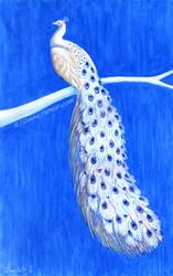 Blue Willow by RJDaae