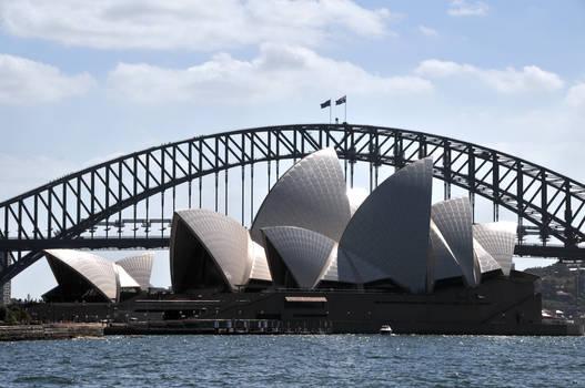 Sydney Curves