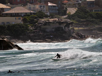 Surfing Bronte
