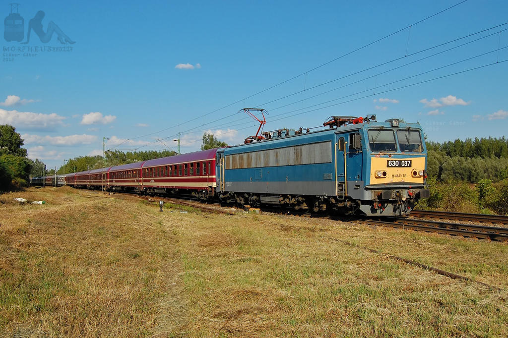 630 037 with the Sziget Express near Gyor by morpheus880223
