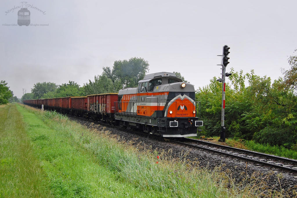 429 009 with freight in Gyorszabadhegy by morpheus880223