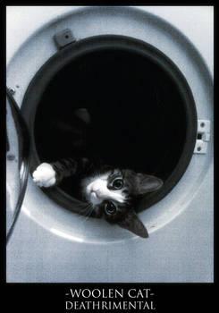 Woolen Cat