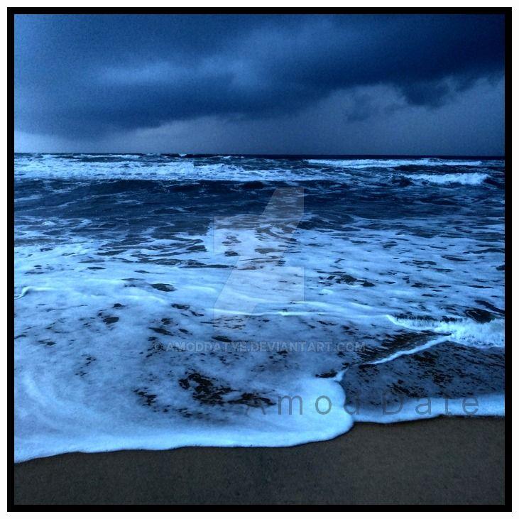 Wild  Shores 3 by amoddatye