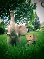 Danbo with elephant