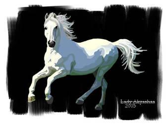 White Horse by Lady-Akyashaa