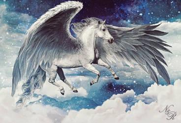 Ripley the Pegasus
