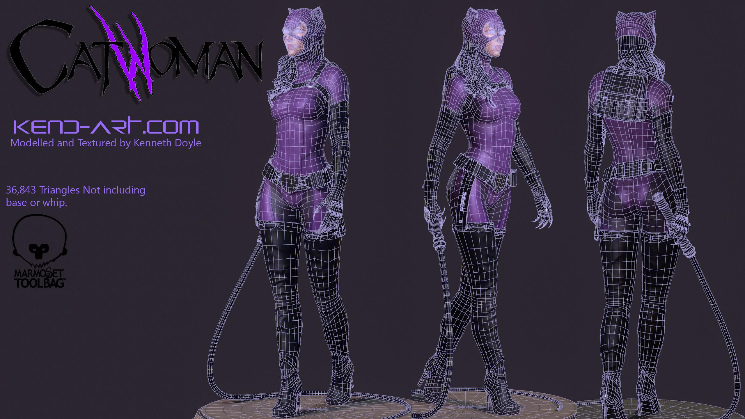 catwoman___wireframe_by_kdoyle9-d7vpdda.jpg