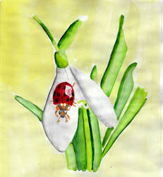 Ladybug by Moondancer3
