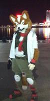 Fox McCloud by RavenTimberwolf