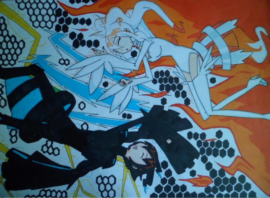 Noir Zekrom et Blanche Reshiram by mimizaku