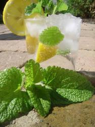 Lemon-Balm Mocktail I by insomniacs-nightmare