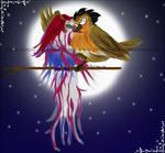 Birdie-Boy loves his Girl
