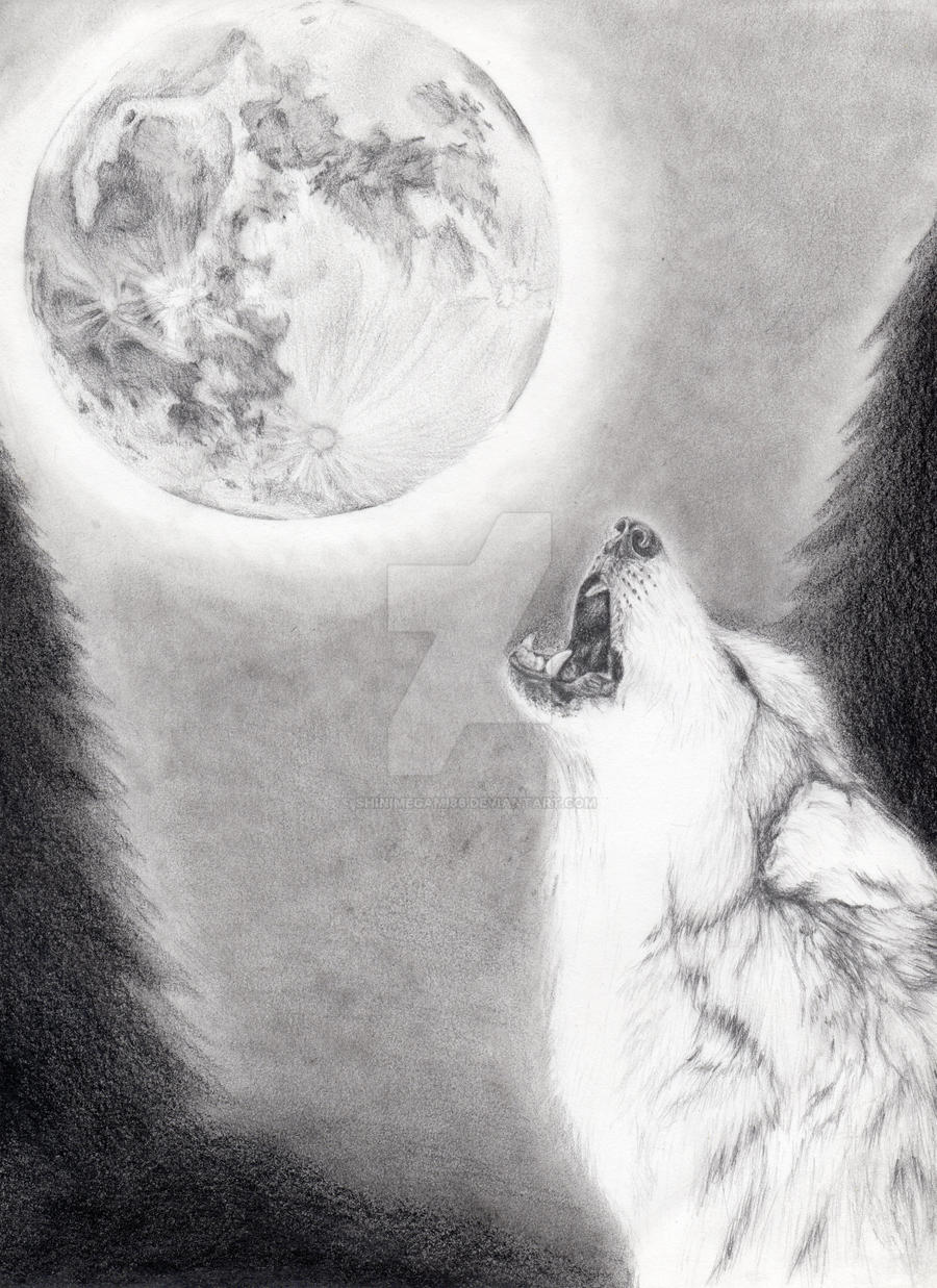 wolf and moon by shinimegami86 wolf and moon by shinimegami86