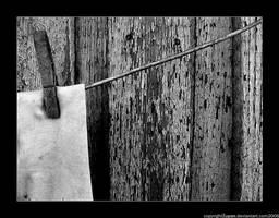 dryer. by zupan