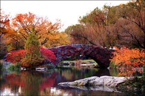 fall in Central Park. by vildkatt