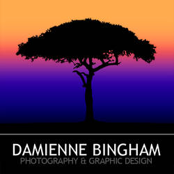 Damienne Bingham Photography and Design