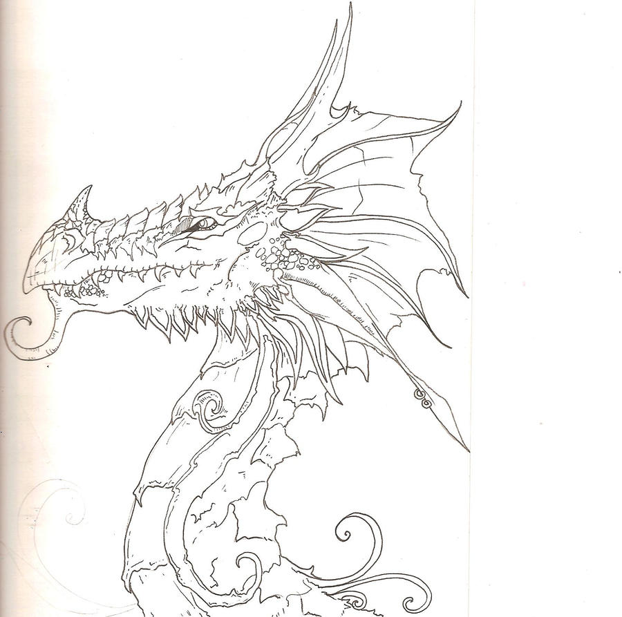 Line Drawing Dragon : Dragon line art by panda odono on deviantart