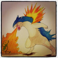 Typhlosion used flamethrower! by panda-odono