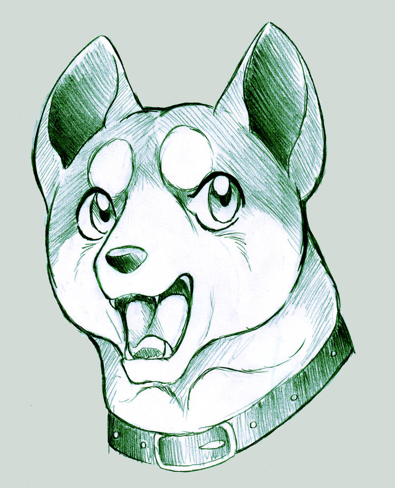 Ginga head sketch by Naaraskettu