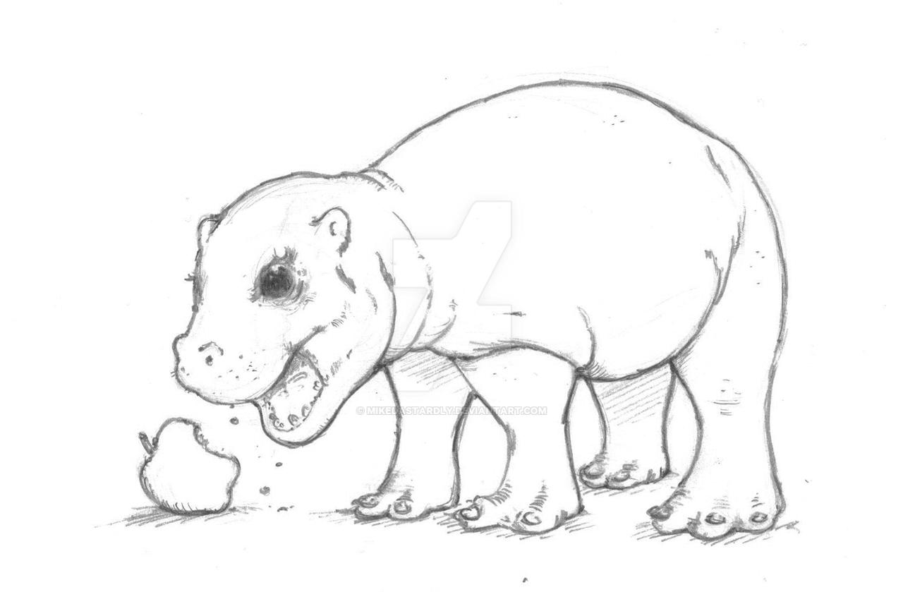 Uncategorized Hippo Drawings baby pygmy hippo by mikedastardly on deviantart mikedastardly