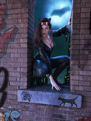 Catwoman by MikeDastardly