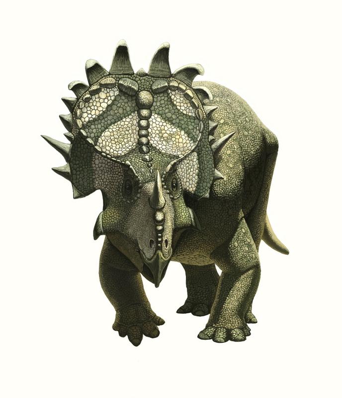 Sinoceratops by Olorotitan