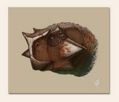 Psittacosaurus sibiricus portr by Olorotitan