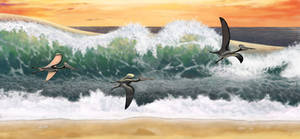 Pterosaurs and a surf