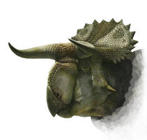 Head of Nasutuceratops by Olorotitan