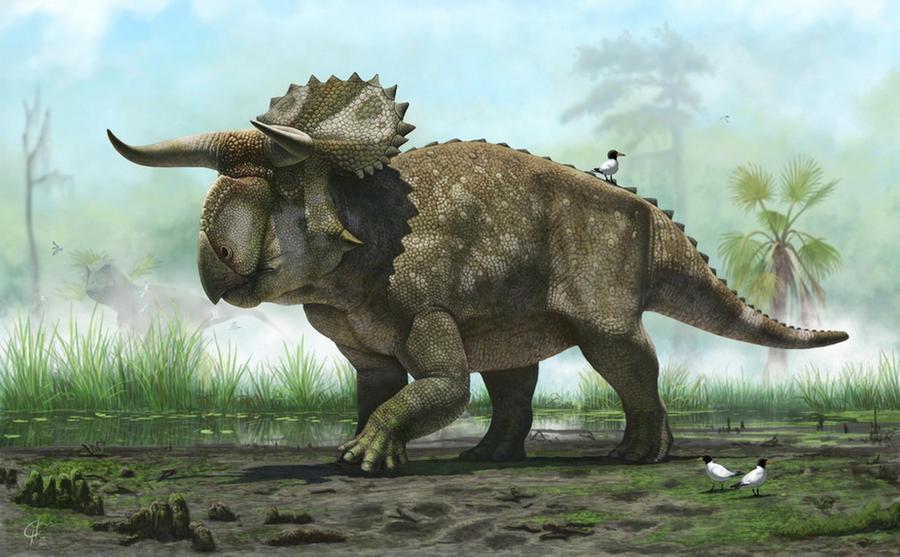 Nasutuceratops titusi by Olorotitan