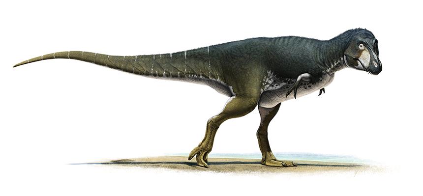 Lythronax by Olorotitan