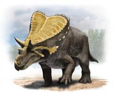 Mercuriceratops